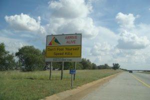 Mpumalanga traffic cop ploughs into cows
