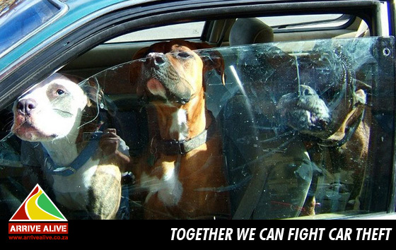 Together we can fight car theft...!!
