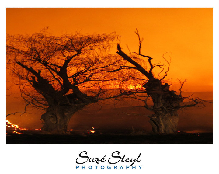 Drive with caution as veld fires rage across the Free State