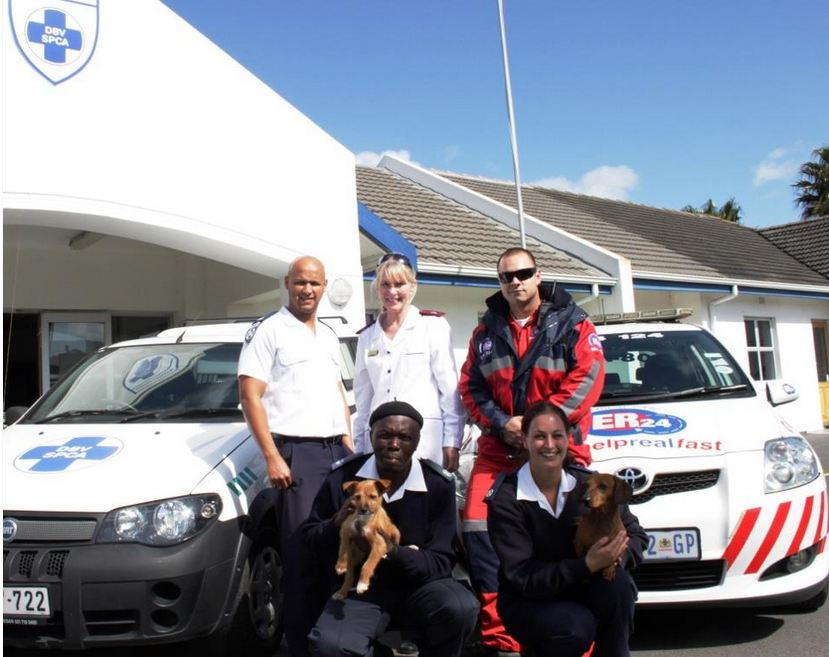 ER24 assists the animal handlers of the SPCA