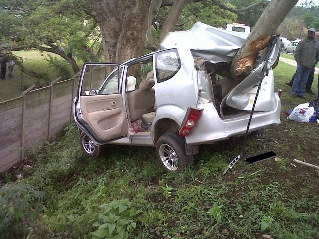 Car Crashes Into Tree, 4 Injured