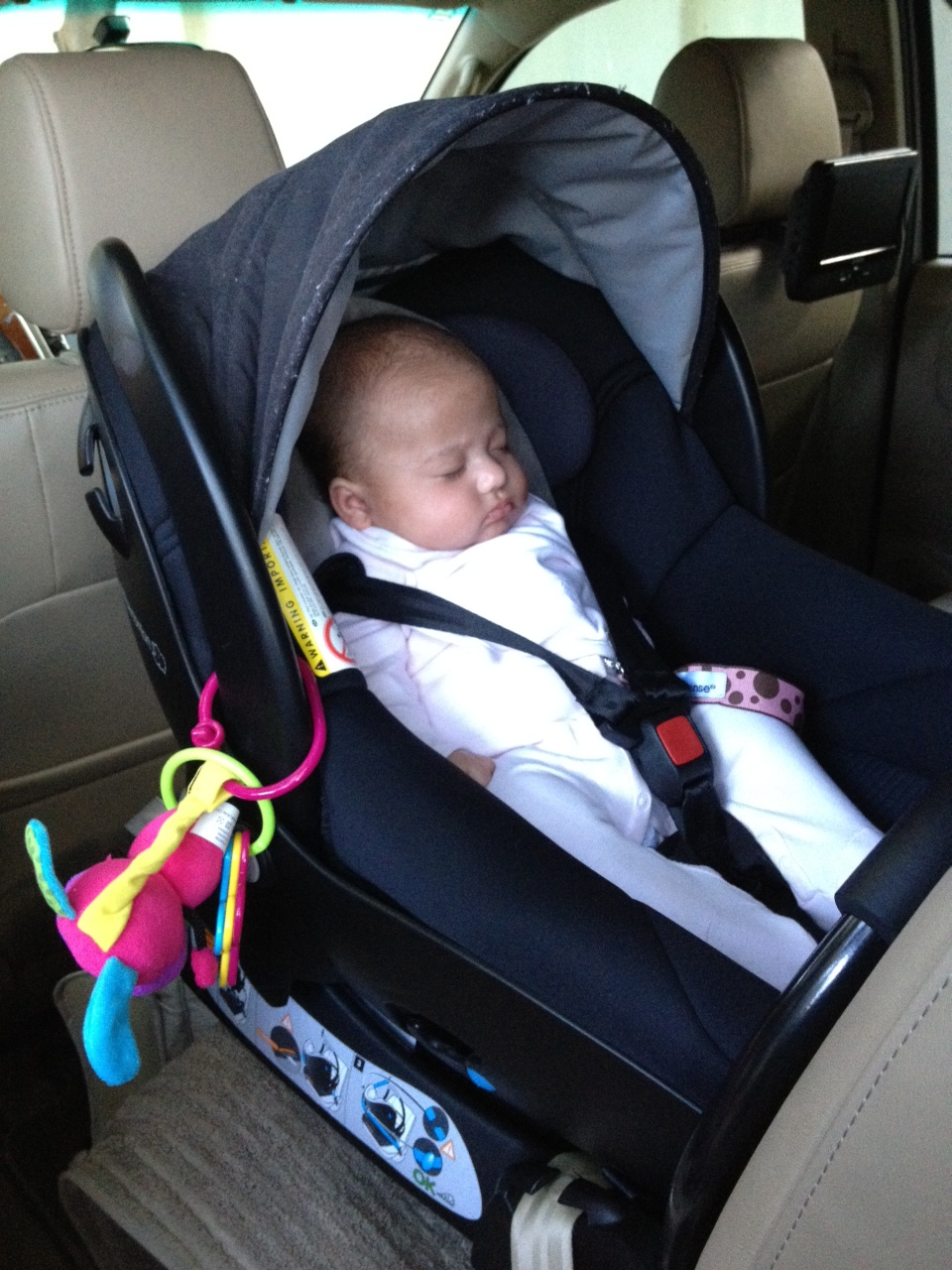 Infographic provides insight towards the importance of car seats for children in the U.S.