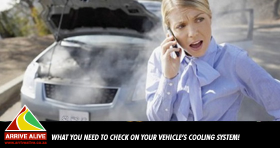 Going on Holiday: What You Need to Check on Your Vehicle's Cooling System!