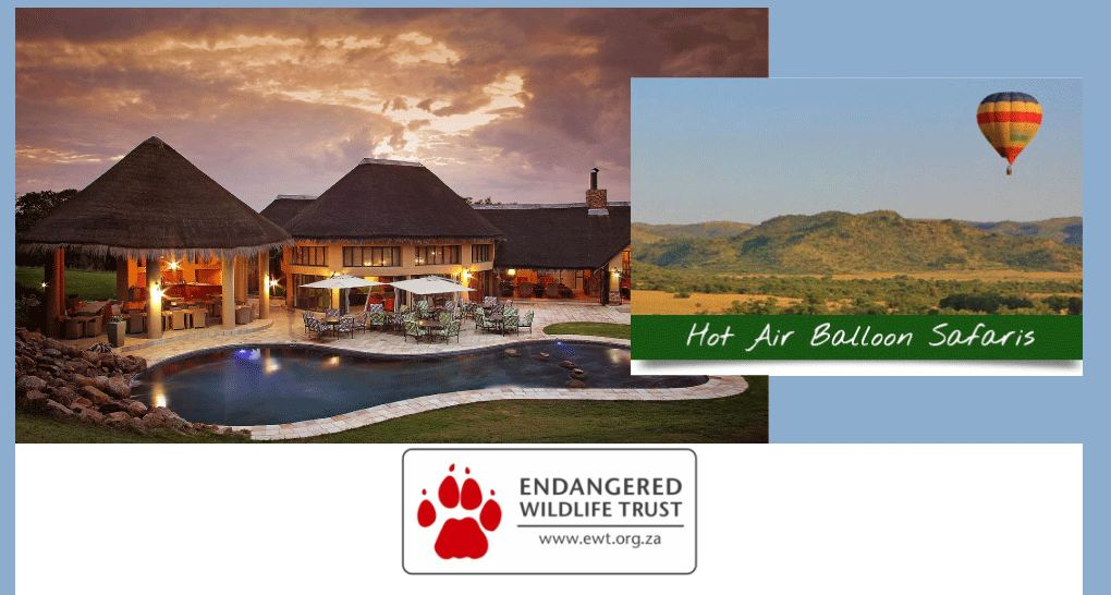 Support the work of the EWT and win a Hot Air Balloon Safari & accommodation at the Ivory Tree Lodge