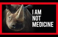 Three rhino poachers arrested at a Private Game Reserve in Hoedspruit, Limpopo