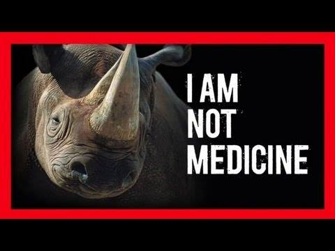 Six alleged rhino poachers stopped in their tracks