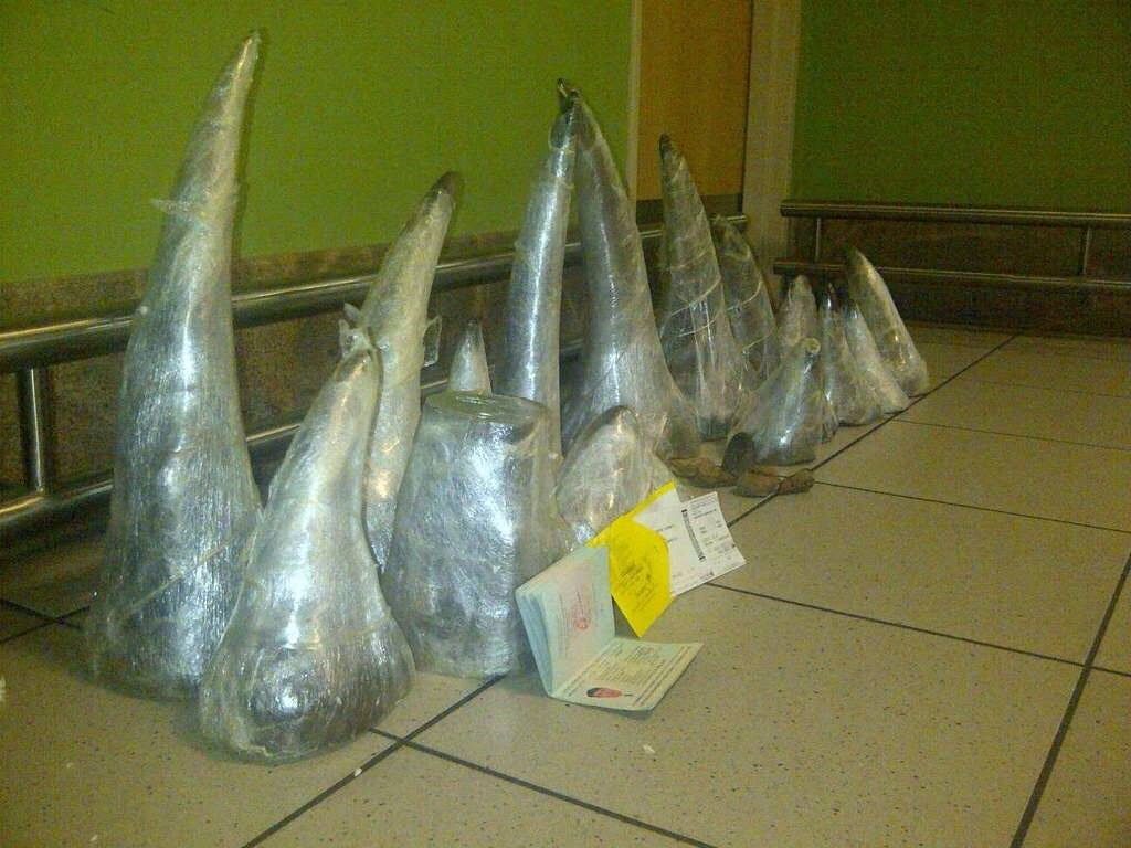 Two Vietnamese men arrested and rhino horn seized at Oliver Tambo airport