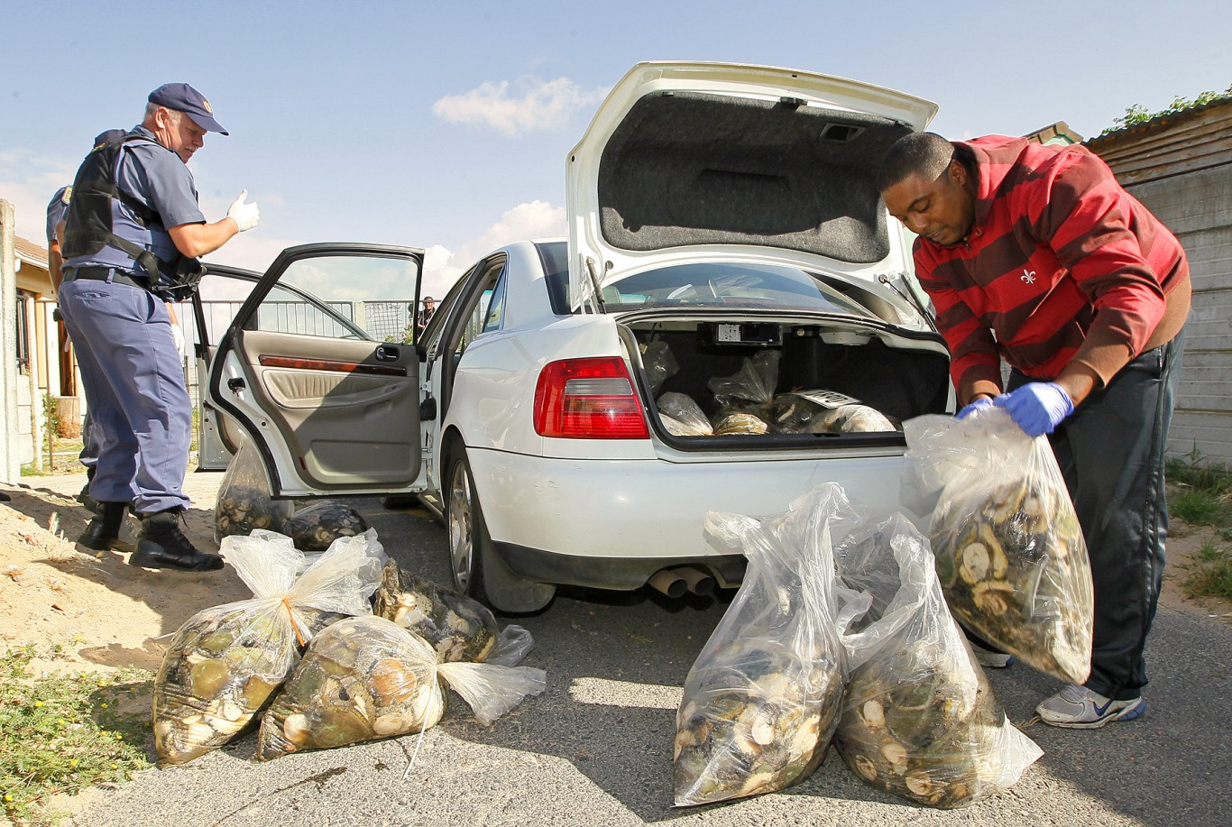 Illegal abalone activity uncovered after high speed police chase