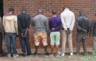 Eight suspected drug dealers arrested in Limpopo