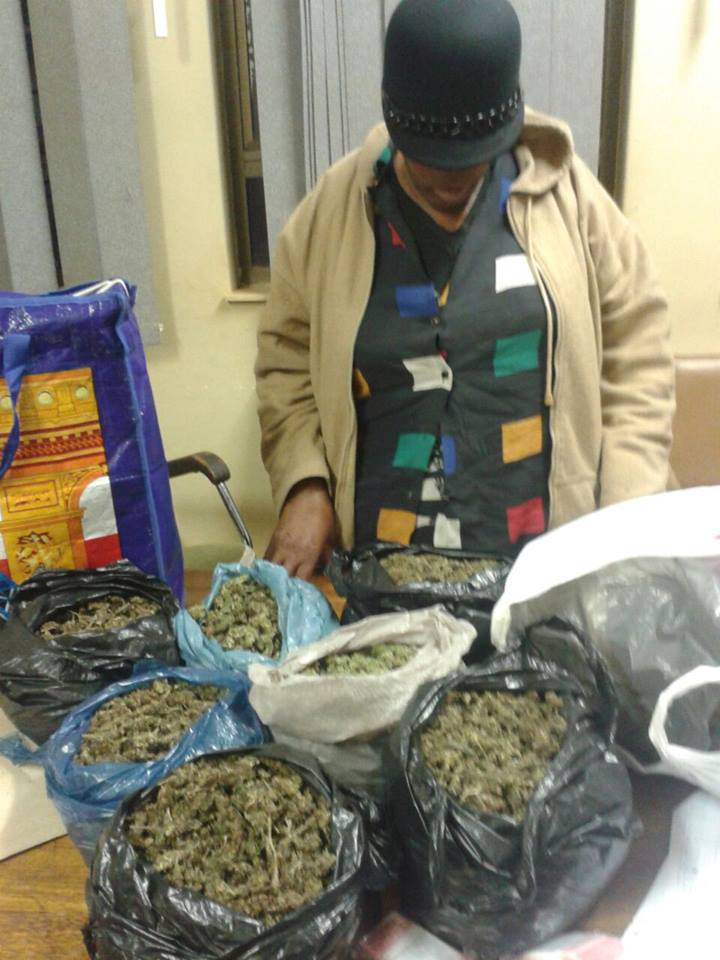 Woman arrested in possession of 11 bags of dagga on minibus taxi