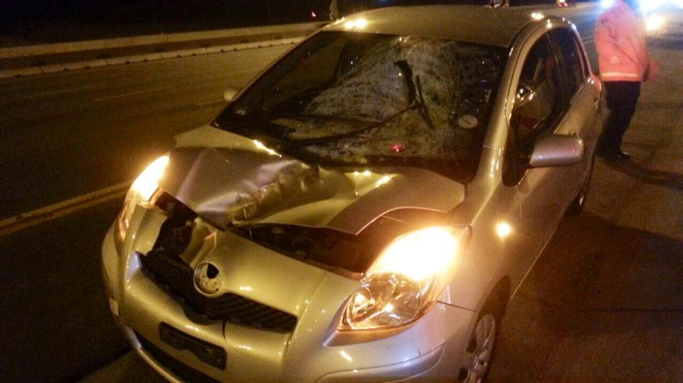 Pedestrian killed in collision on the N1 near the Allandale off-ramp