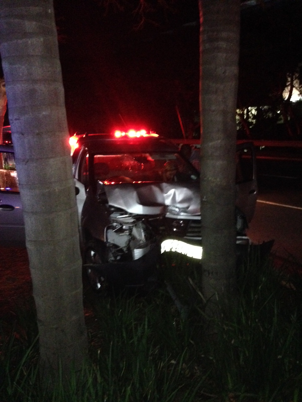 Female driver injured as car smashes into palm trees on Umhlanga Rocks Drive