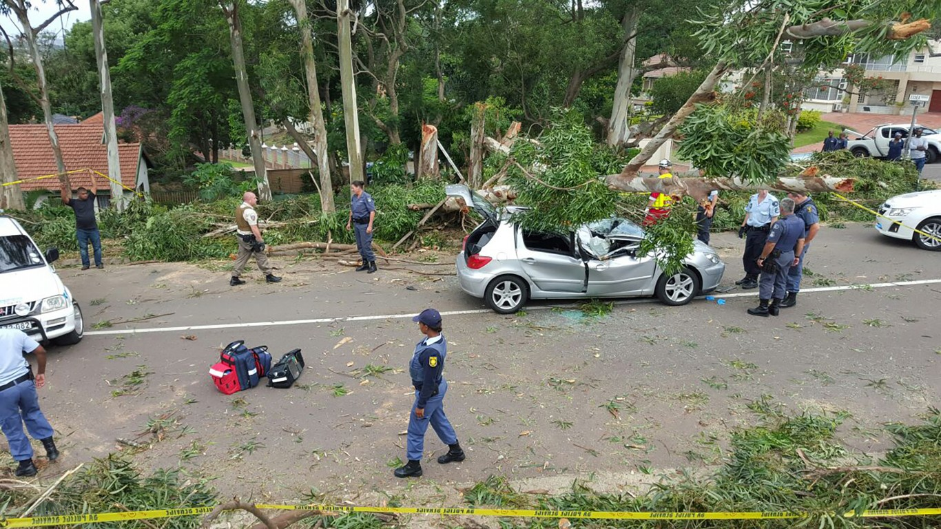 Freak accident kills man as tree falls on car