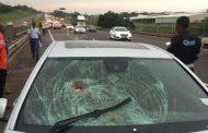 Man killed on N2 pedestrian collision