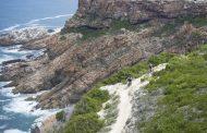 Shorter, sharper 2016 Cape Pioneer Trek Route revealed!