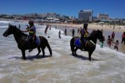 Eastern Cape Mounted Unit keeping people safe in the Eastern Cape