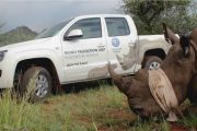 Volkswagen continues to highlight Rhino protection
