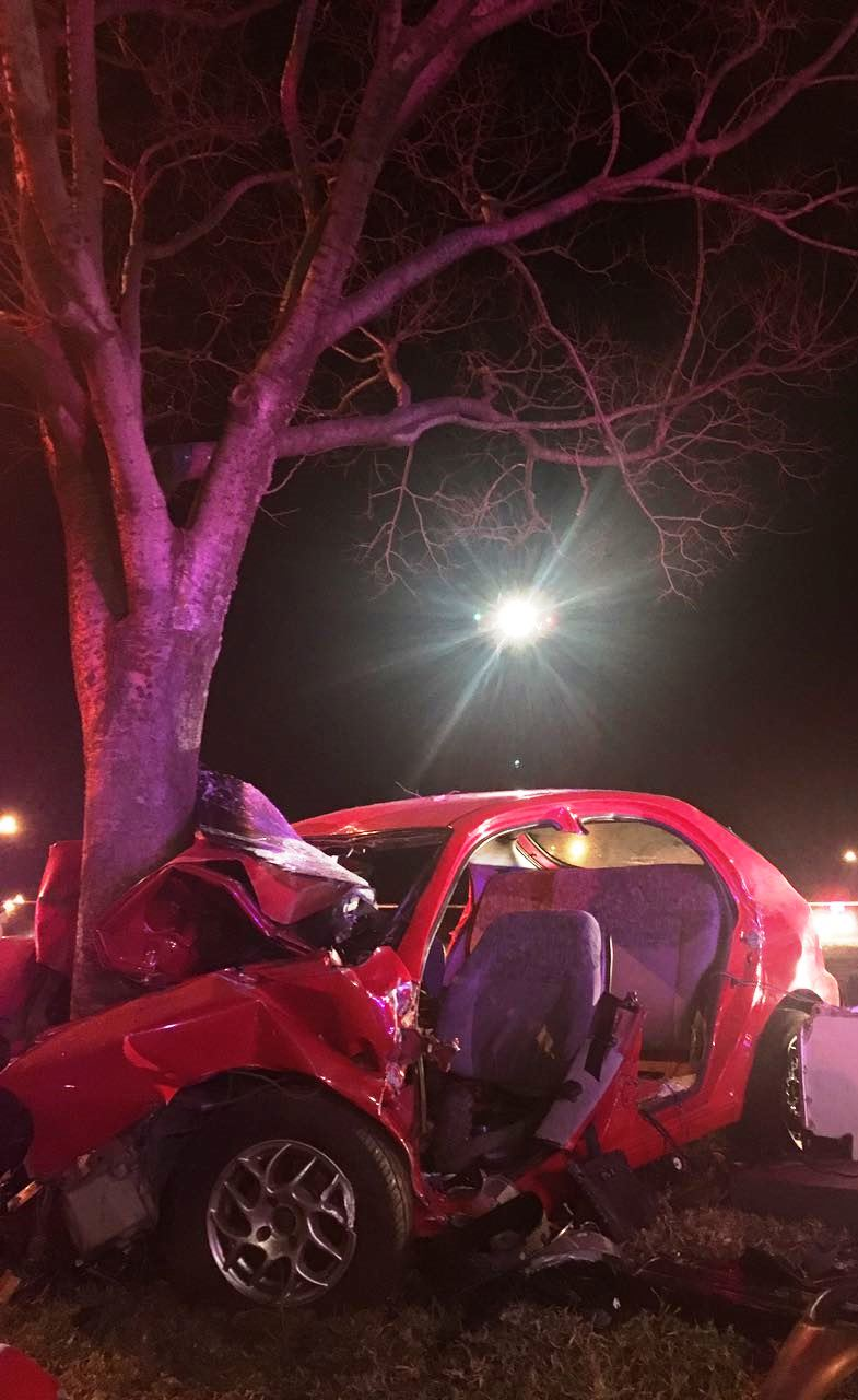 Vanderbijlpark: 1 Killed, 1 critically injured and airlifted following collision with tree.