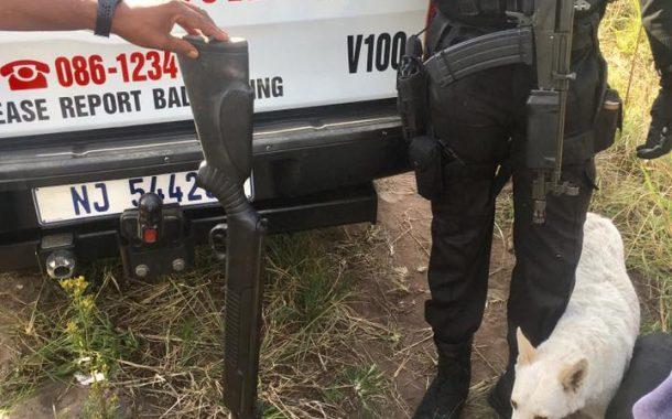 Monkey Poachers Apprehended, Verulam