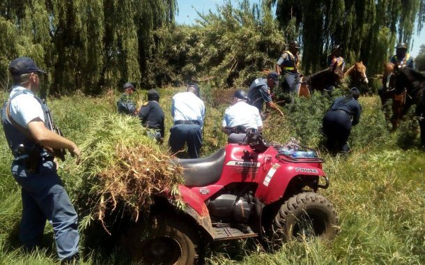 Gauteng police and community join hands in fighting drugs and crime