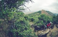 Itec Oxpecker Trail Run offers hills and high-fives