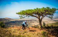 Biking is blissful in the bush