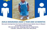 Search continues for missing toddler