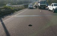 Woman killed when knocked down while trying to cross the N2