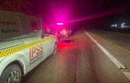 Pedestrian killed on the N2, Shaka's Rock