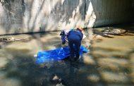 Body found near Paradise Valley