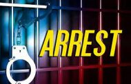 Two male suspects arrested for business robbery